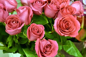Fresh and fragile bouquet of pink roses
