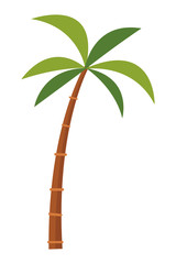 palm tree cartoon