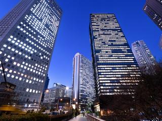 Wall Mural - 東京都 夜の新宿高層ビル街