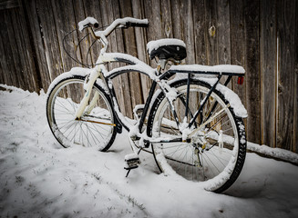 Vintage bicycle on Winter Snow - Color IV