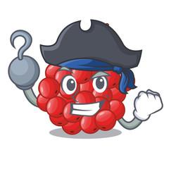 Pirate rowan berries fruit on cartoon wood