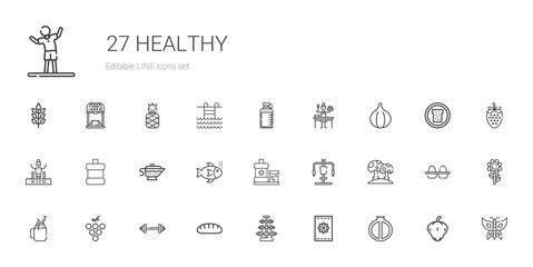 healthy icons set