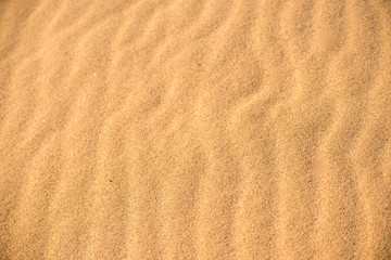 Sand of a beach with line pattern