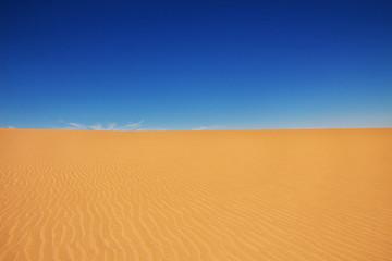 Algeria, Algiers, algerian, desert