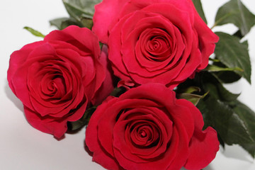 A bouquet of three red roses lies on a white background. Photo suitable for greeting card.