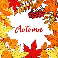 Hello autumn hand drawn fall leaves.