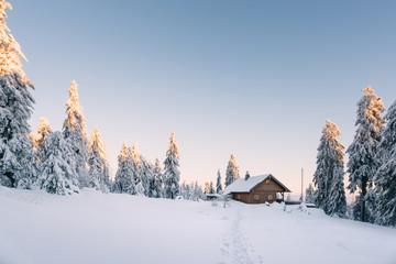 Hütte im verschneiten Wald bei Sonnenaufgang Wall mural