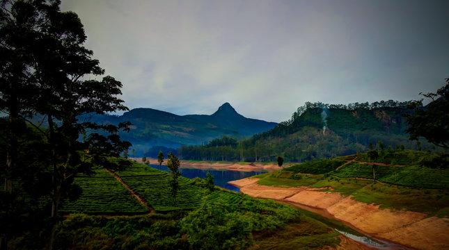 Panoramic view to Sri Pada peak and lake with tea plantation at Nuwara Eliya, Sri Lanka