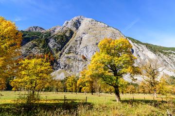 Grosser Ahornboden, Karwendel, Tyrol, Austria