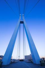 Fototapete - 夕暮れの辰巳桜橋