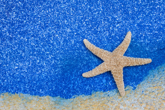 beautiful starfish on blue sea background