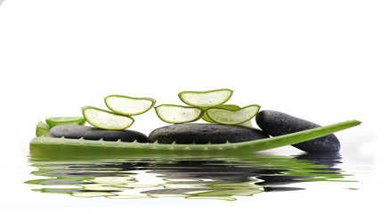 sliced aloe vera on spa stones are reflected in water surface