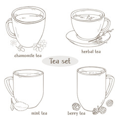 Set with cups of tea. Chamomile, mint, herbal and berry tea. For restaurant menu, processing, health care. Monochrome vector illustration in sketch style. Black and white silhouette.