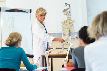 medical studies on human skeletal system