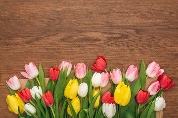 top view of colorful tulips on wooden background