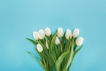 top view of bouquet with white tulip flowers isolated on blue