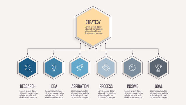 Business infographic. Organization chart with 6 options, hexagons. Vector template. Editable line.