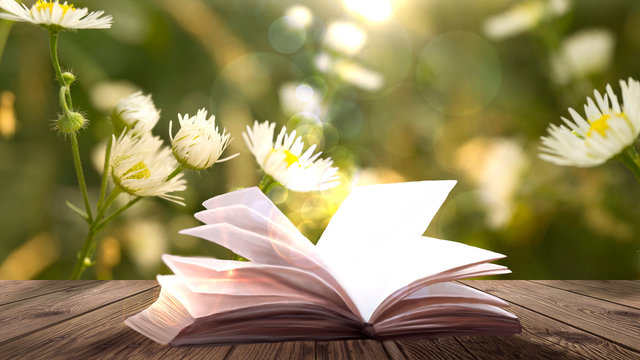 Open book on the wooden table, green summer grass background.