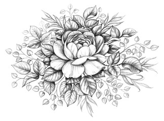Hand drawn Rose wish Leaves Decoration