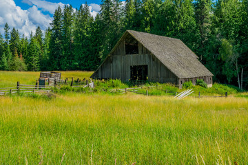 Old barn and truck in green field