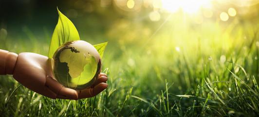 Environment Concept Green Planet