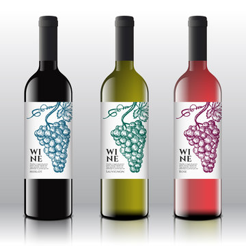 Premium Quality Red, White and Pink Wine Labels Set on the Realistic Vector Bottles. Vintage Typography Design with Hand Drawn Retro Grapes Bunch.