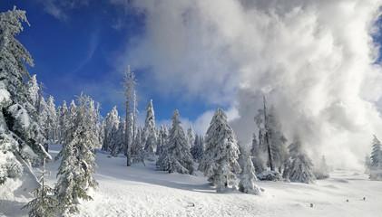 traumhaft schöne Winterlandschaft