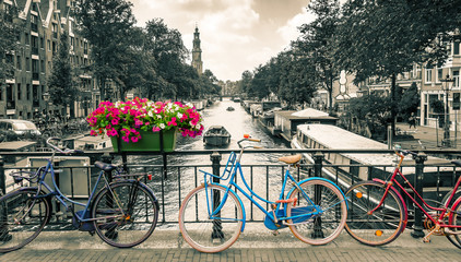Poster Bicycle Amsterdam - Black and white photo with colored bicycles