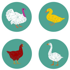 set poultry modern icon vector eps 10