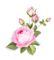 The Blooming Rose with couple of small flowers. Botanical illustration. Awesome single flower bouquet. Vector illustration.
