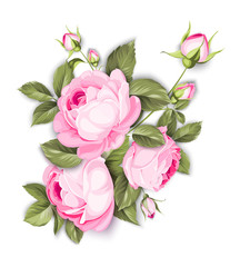 The Blooming Rose with couple of small flowers. The Botanical illustration. Awesome single flower bouquet. Vector illustration.