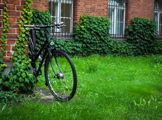 Bicycle in the green garden. Vintage garden concept