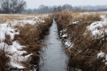 Fototapeta Zimna wiosna