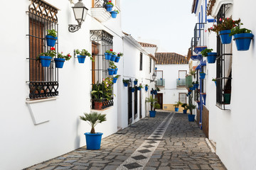 Blue Flowerpots with Flowers in Estepona Andalusia Spain