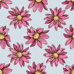 Seamless pattern with hand drawn colored chrysanths, primula