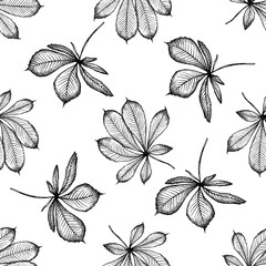 Seamless pattern with black and white buckeye
