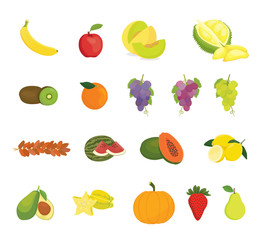 fruit collection with various kind of fruits and color variant - vector