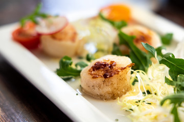 Close-up of grilled seared fresh scallops served as appetizer