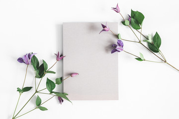 Flowers composition. Purple flowers, gray paper blank on white background. Spring concept. Flat lay, top view, copy space