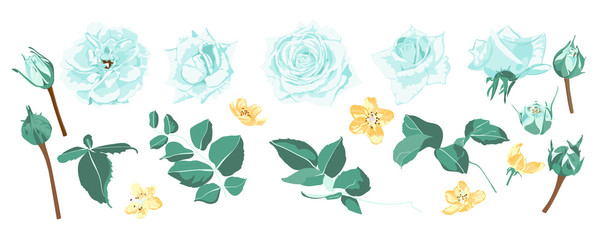 Roses Bouquet For Rustic Wedding Design.