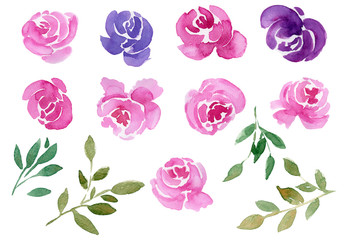 Watercolor set of blooming flower buds, roses, peonies, twigs and leaves. Illustration isolated on white background. Floral decorative elements.