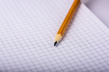 the pencil is on the notebook