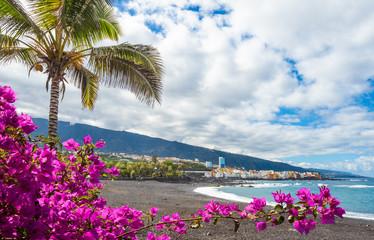 Wall Mural - Landscape with Playa Jardin on Puerto de la Cruz, Tenerife island, Spain