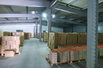 Factory Chicken Egg Production. Warehouse fridge with ready to send boxes with eggs. Agribusiness company.