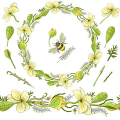 Wreath for greeting with flowers Plumeria and floral elements and bumblebee. Set of elements with church flowers Plumeria and bumble-bee.