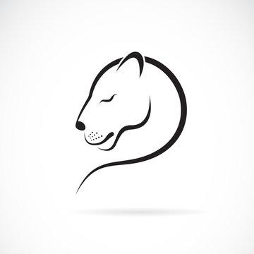 Vector of female lion design on white background. Wild Animals. Female lion logo or icon.