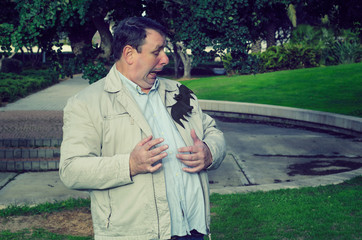 Mature man is very scared because big bat has landed on his jacket