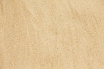 background concept - sandy beach surface Wall mural