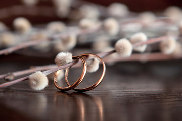 Wedding rings lie on a wooden table. Willow twigs on wooden background. Signs and Symbols
