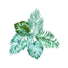 Vector tropical leaves composition with palm and monstera. Exotic botanical design for cosmetics, spa, perfume, health care products, aroma, wedding invitation